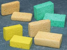 absorbent sponge