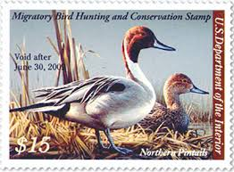 2008 duck stamp