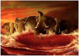 crimson tide photos