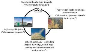 tenaga biojisim