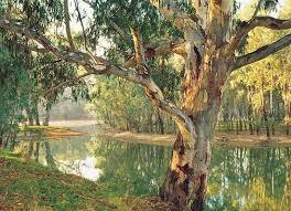 australia river