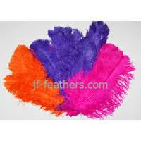 feathers decoration