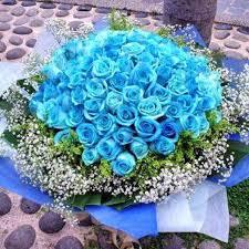 blue roses bouquets