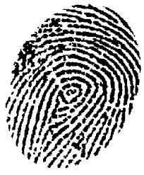 fingerprint recognition laptops
