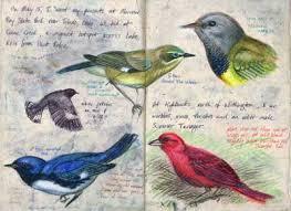 journal sketchbooks