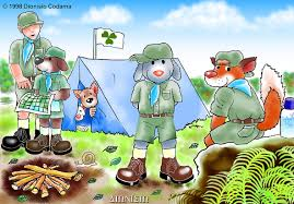 scouts camping