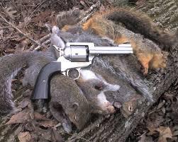 hunting handgun