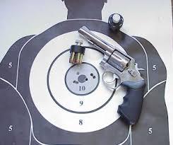 home defence guns