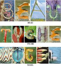letters nature