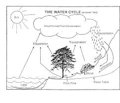 water cycle worksheets