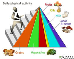 food guide pyramid pictures