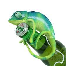 chameleon toys