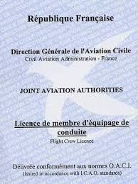 pilot licence