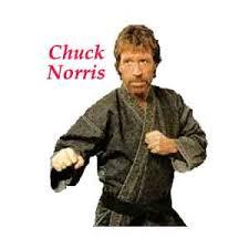 chuck norris random