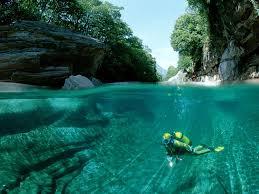 diving wallpaper