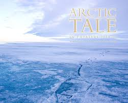 arctic backgrounds