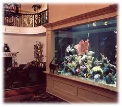 custom marine aquariums