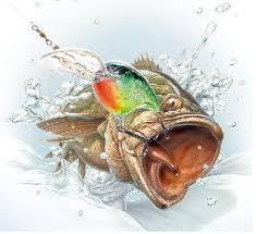 fishing screensavers