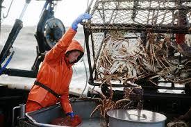 alaskan crab fishing