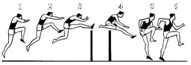 sprint hurdles