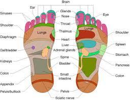 body reflexology