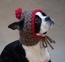 dog hat pattern