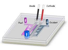microfluidic fuel cell