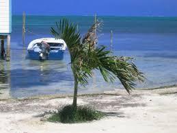caye caulker beaches