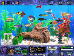 fish tycoon pictures