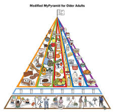 food pyramid for seniors