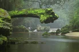 digital photography nature