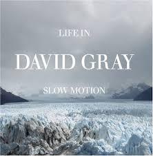 david gray album