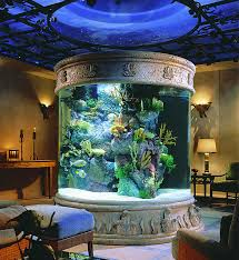large home aquarium