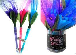 fiber optic pen