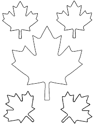 maple leaf shapes