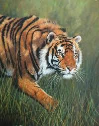 paintings of tigers