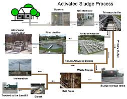 activated sludge processes