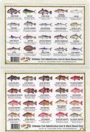 freshwater fish id