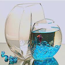 fish bowl fish