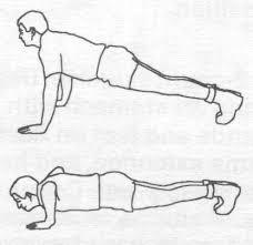 push up exercise