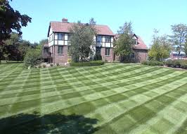 pictures of lawns