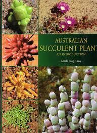 flowering succulent plants