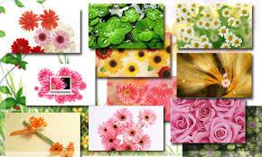 free download beautiful wallpapers
