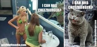 i can have cheezburger