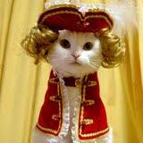 japanese cat costumes