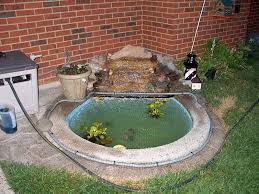 goldfish ponds