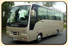 minibus isuzu