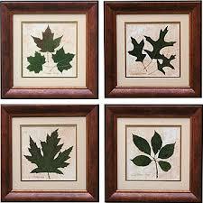 leaf framed