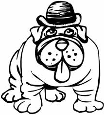 bull dog coloring pages