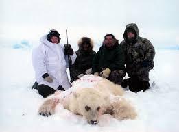 polar grizzly bear hybrid
